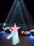 鹿児島市の写真