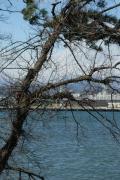 富士市の写真
