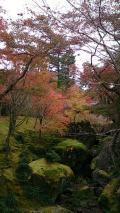 金・土で箱根 温泉一泊旅行
