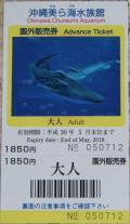 沖縄旅行2016年②美ら海水族館、古宇利島ほか