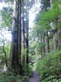 神奈川県の写真