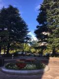 仙台は光と杜の都だった・・・初宮城Day1後編 ~勾当台公園とかタイ料理とか~