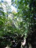 長野県の写真