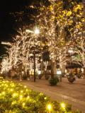 有楽町の写真