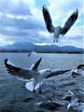 長崎県の写真