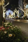 神戸市の写真