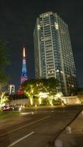 パンダと東京スカイツリーと飛行機初体験の旅 東京観光1日目