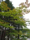 和歌山県の写真