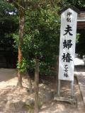 島根県の写真
