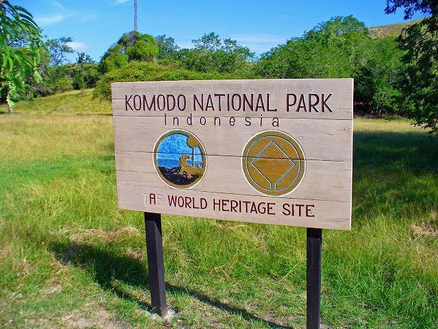 コモド国立公園の画像 p1_7