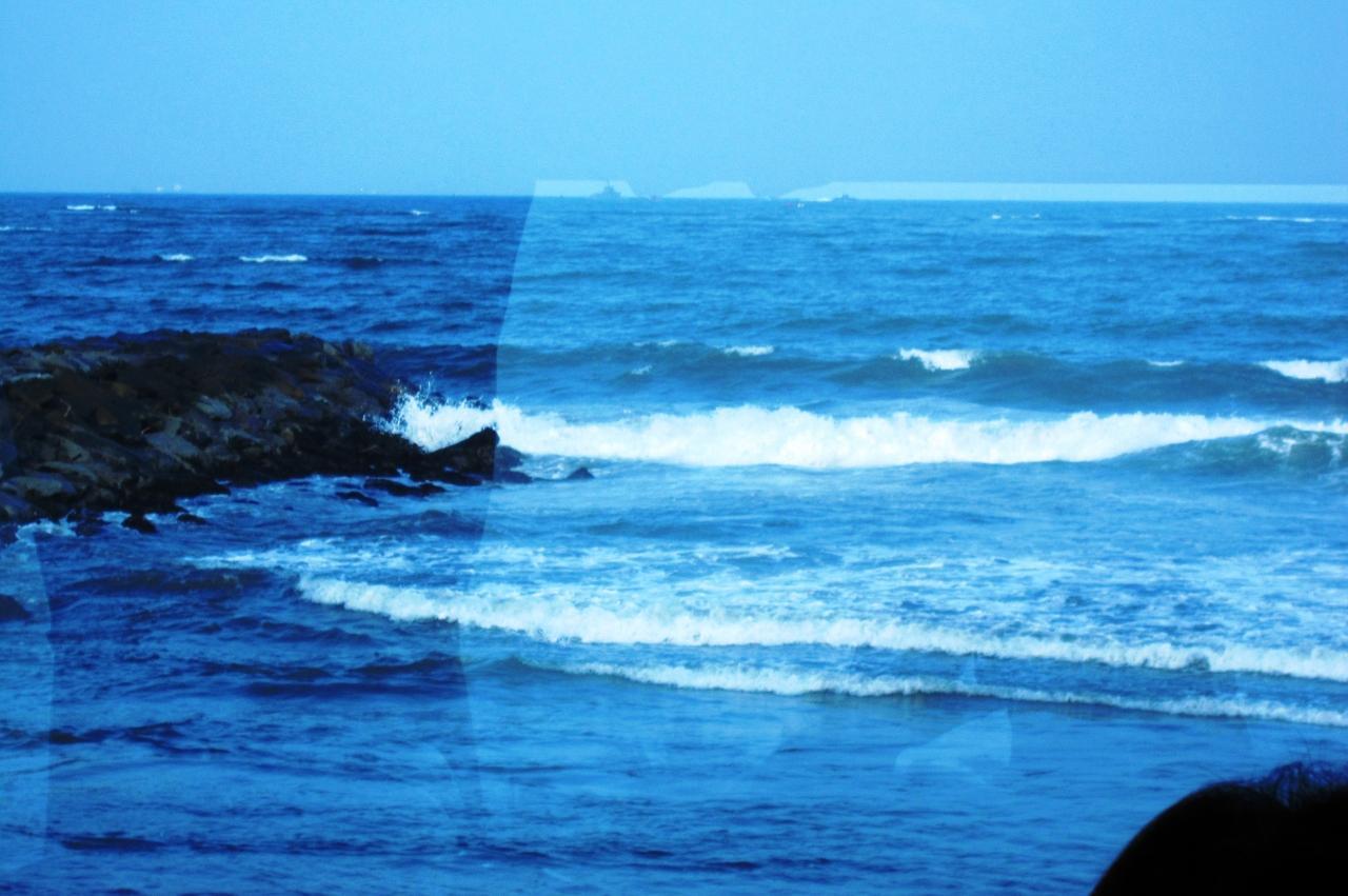 2011夏、スリランカ旅行記(4)ネ...