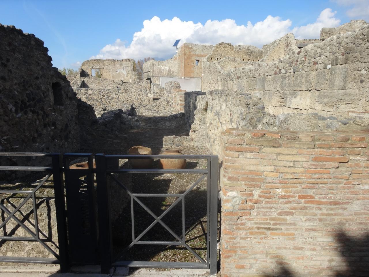 ポンペイ、ヘルクラネウム及びトッレ・アンヌンツィアータの遺跡地域の画像 p1_22