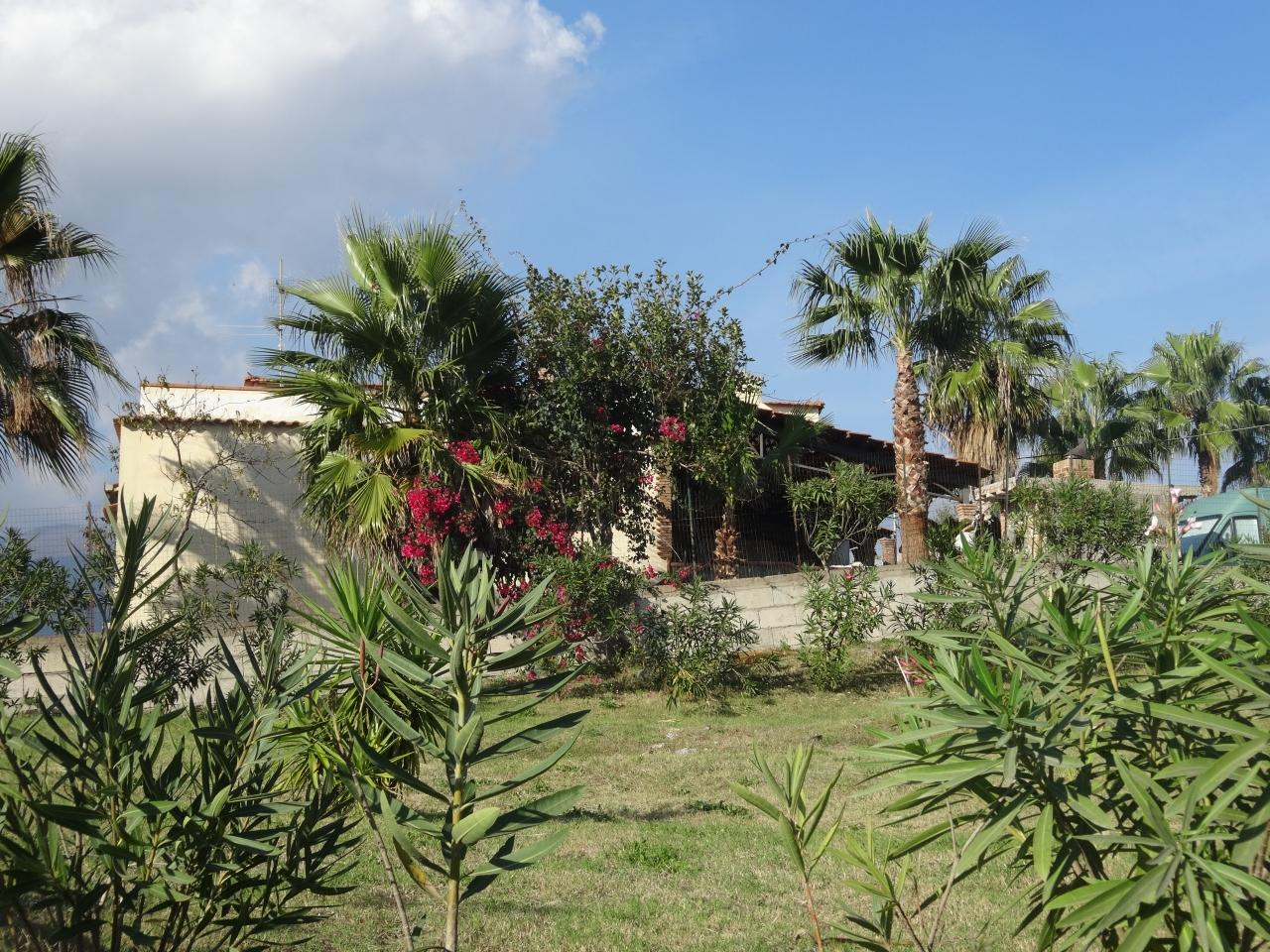 ポンペイ、ヘルクラネウム及びトッレ・アンヌンツィアータの遺跡地域の画像 p1_27