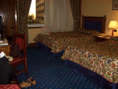 シェファード ホテル 写真