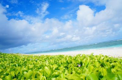 リティディアン岬 (リティディアン ビーチ)