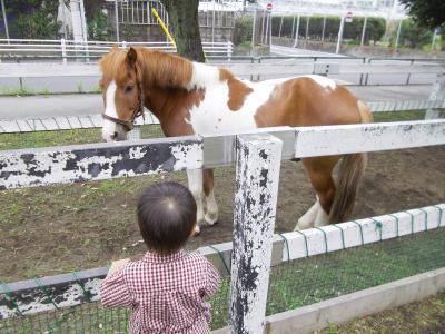 子供と一緒に遊べる・学べる、東京にある無料の施設を特集 都内で子供と無料で遊ぶ!