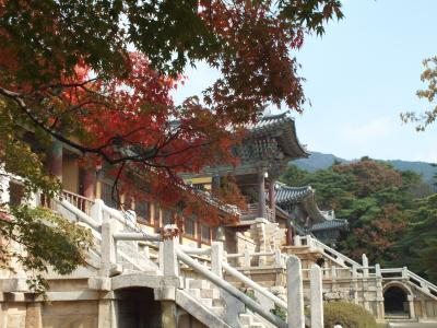 慶州のツアー