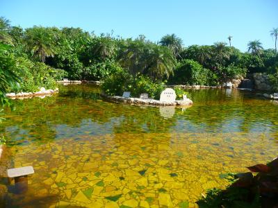 シギラ温泉 奇跡の泉