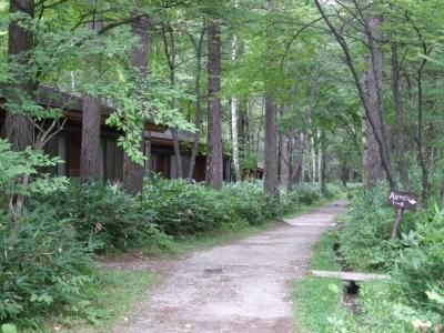 森のリゾート小梨