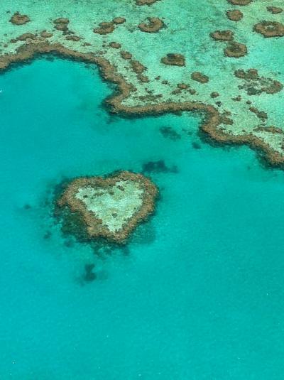 キラキラの海、可愛い動物、豊かな自然に癒やされる♪ オーストラリアで出会える、天国の島