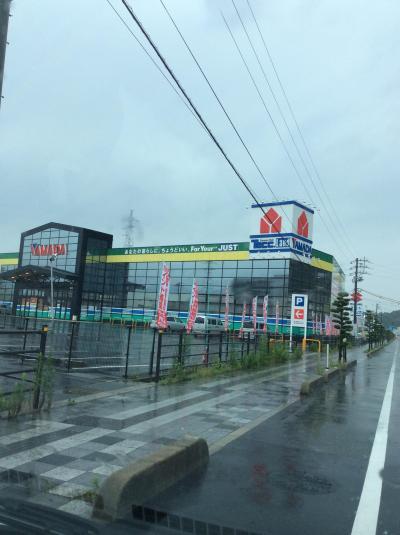 ヤマダ電機テックランド (萩店)