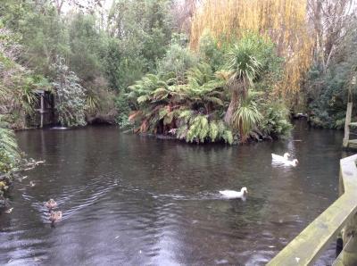 ウィローバンク野生動物公園
