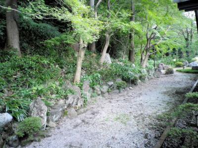 国定公園 揖斐峡 揖斐川丘苑
