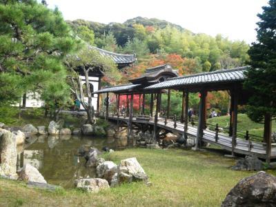 高台寺 秋の夜の観月茶会