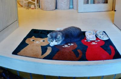富士山 健康開運温泉猫と小犬のお宿 ペンションブルーポピー