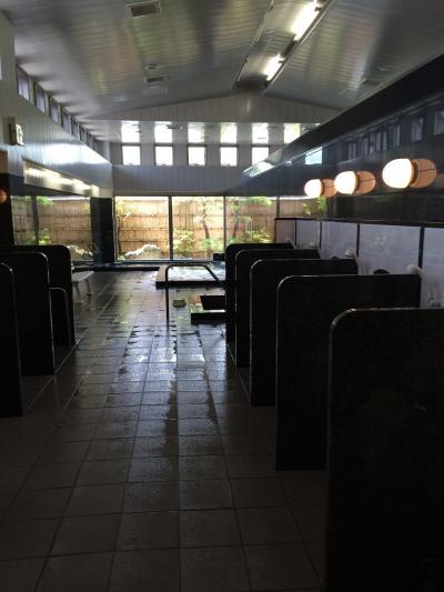薬王寺温泉 醫王の湯