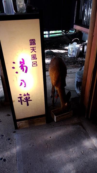 脇田温泉 楠水閣