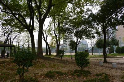 磯路中央公園