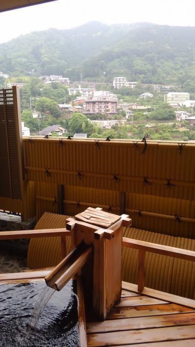 湯河原温泉 川堰苑いすゞホテル(いすず)