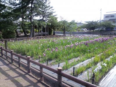 桑名城跡 九華公園