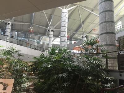 花蓮空港 (HUN)