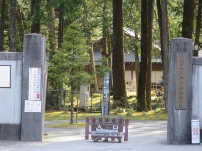 日光田母沢御用邸記念公園