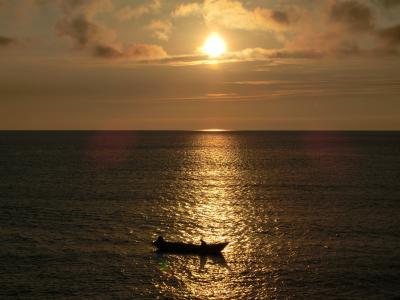 アザラシの見える宿 民宿スコトン岬