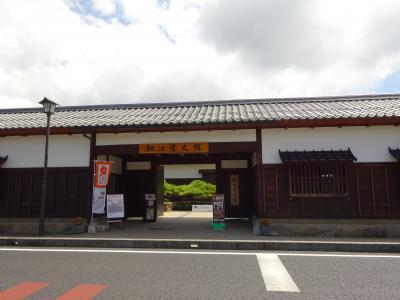 日本庭園を見ながら和菓子を堪能