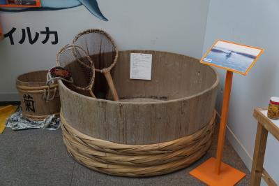 大洗海洋博物館