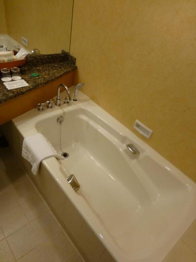 浴槽も十分な広さです.シャワーカーテンはありません.