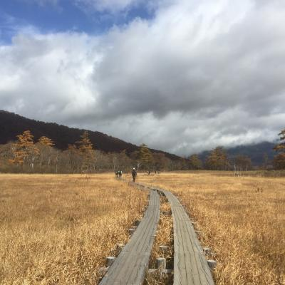 尾瀬のハイキングコース