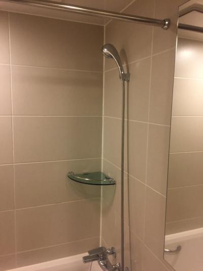 シャワー固定でなく、水圧もばっちり