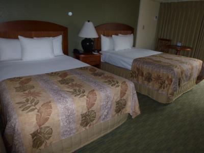 ベッドも大き目!部屋は広くトランク2個が余裕で広げられます