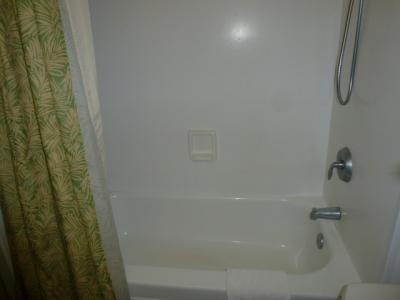 大き目のバスタブ、シャワーも固定ではないので使いやすい