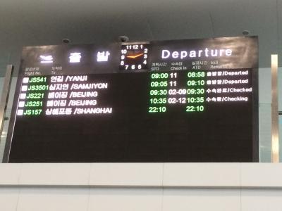 平壌国際空港 (FNJ)
