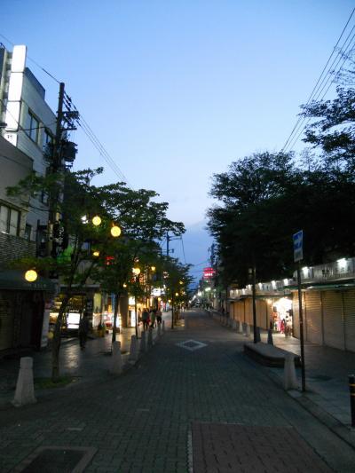 三条通ショッピングモール (奈良三条通り)