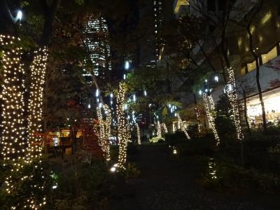 京王プラザホテル クリスマスイルミネーションナイト