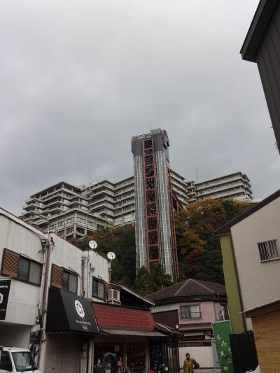 大江戸温泉物語 箕面観光ホテル 箕面温泉スパーガーデン