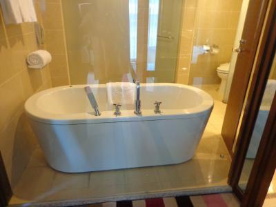 ガラス張りとバスタブ奥にシャワーとトイレ右に洗面2台