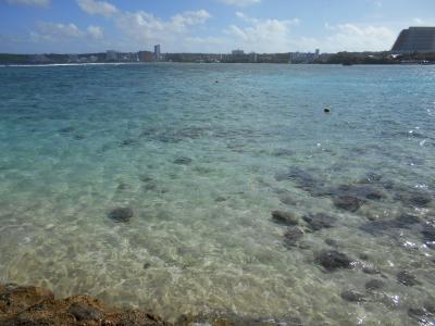 海は確かに綺麗でした☆